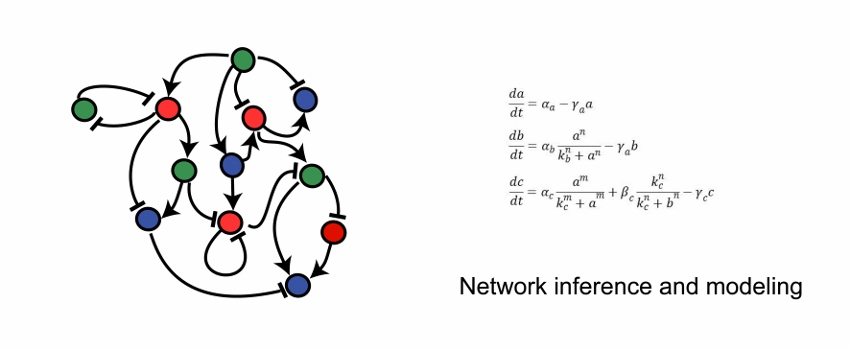 Network inference
